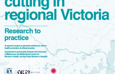 Victorian Refugee Health Network » Women's Health